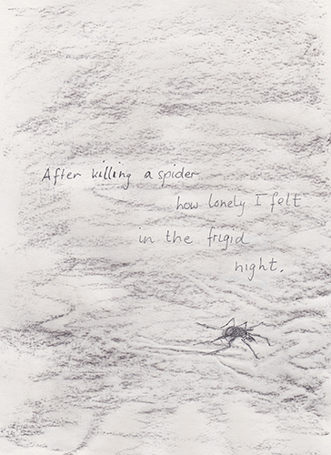 killing-spider